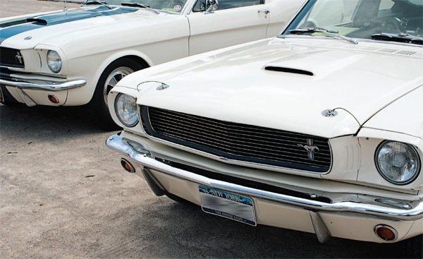 The front end of the new 1966 GT350 carried over with the same styling cues of its predecessor. Hood and front end geometry remained, although Ford's use of a different grille material (bright polished horizontal bars instead of the former chicken-wire-style mesh) transferred to the Shelby product as well.