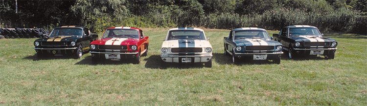 With the center car representing the total available exterior color palate for the 1965 Shelby, the addition of four additional colors in 1966 was a pretty big deal. All colors got white striping and the white cars retained the traditional Guardsman Blue stripes. The entire 1966 color palette is shown, but in the absence of the relatively rare black/white car (of which only around 30 were built) a black/gold GT350H was used in its stead to illustrate the full spectrum of 1966 GT350 colors.