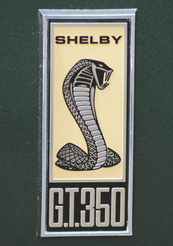"A totally new Cobra snake logo was designed for the 1967 Shelby. It had more ""dimension"" than the earlier flat Cobra logo and was a more realistic representation of a coiled cobra, ready to strike. Carroll Shelby didn't approve of the first edition of the new badge, which was flat with no depth. Shortly thereafter, the badge was retooled to give some relief to the snake but it still wasn't enough; 1968 fixed that. The same badge was used on GT350 and GT500 cars with the lettering being the only difference between the two versions."